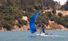Sailboat in San Francisco Bay Royalty Free Stock Photography