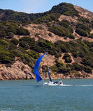 Sailboat in San Francisco Bay Royalty Free Stock Images