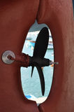 Sailboat. Detail of a boat propeller in the harbor Royalty Free Stock Photo
