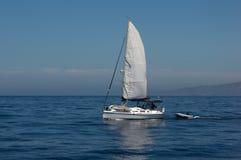 Sailboat at Sea Royalty Free Stock Photos