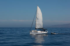 Sailboat at Sea. Sailboat underway off the shore of Southern California Royalty Free Stock Photos
