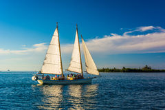 Sailboat seen from Key West, Florida. Royalty Free Stock Photography