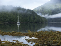 Sailboat in sheltered cove Stock Image