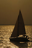 Sailboat in silhouette. A sailboat glides by in the golden sunset of a late Texas afternoon Royalty Free Stock Image