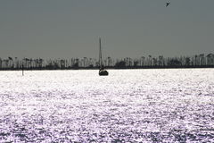 Sailboat Silhouette. Late afternoon on the Mississippi Sound near Biloxi Stock Image
