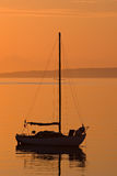 Sailboat silhouette during orange sunrise Stock Image