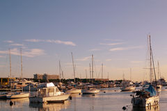Sailboat skyline. Sailboats and yachts docked in one sunny afternoon Royalty Free Stock Photography