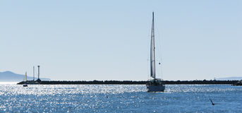 Sailboat Sparkling Sea Stock Photography