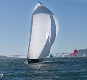 Sailboat with spinnakers at Rolex Cup Royalty Free Stock Photo