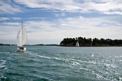 Sailboat Sportive no oceano foto de stock royalty free