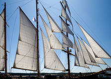 Sailboat, sun and wind Stock Image