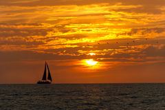 Sailboat Sunset Birds Royalty Free Stock Photography