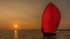 Red spinnaker illuminated by sunset stock photography