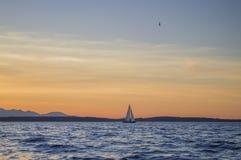 Sailboat. Sunset on Puget Sound, near Seattle, WA. Olympic mountains on the background Stock Image