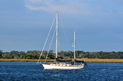 Sailboat on the Tolomoto River Royalty Free Stock Photo