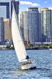 Sailboat in Toronto harbor Royalty Free Stock Image