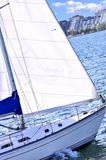 Sailboat in Toronto harbor Stock Photos