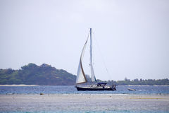 Sailboat in the tropics. Large and luxurious sailboat sailing through the tropics Royalty Free Stock Images