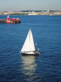 Sailboat in Upper New York Bay Royalty Free Stock Photos