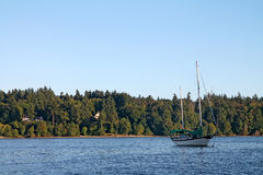 Sailboat in Vashon Island harbor Royalty Free Stock Images