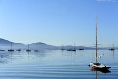 Sailboat on water in the morning Stock Photo
