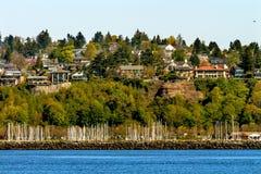 Sailboat Yachts Marina Cliff Waterfront Seattle Washington Royalty Free Stock Photos