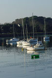 Sailboats και μικρές βάρκες που δένονται με τα δέντρα στο υπόβαθρο Στοκ φωτογραφία με δικαίωμα ελεύθερης χρήσης