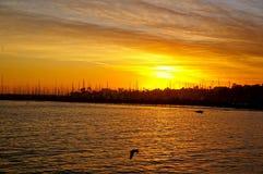 Sailboats Καλιφόρνιας Στοκ εικόνα με δικαίωμα ελεύθερης χρήσης