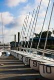 sailboats κατάρτιση Στοκ Εικόνα