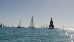 Sailboats που κυβερνούν τον ωκεανό φιλμ μικρού μήκους