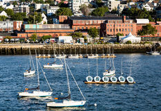 Sailboats στο λιμάνι με το Πόρτλαντ στο υπόβαθρο Στοκ Εικόνες
