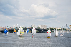 Sailboats στο Dnipro στοκ εικόνα