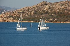 sailboats Imagenes de archivo
