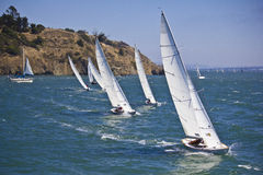 Free Sailboats Stock Images - 16042604