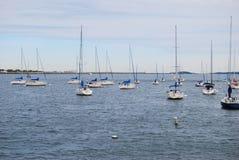 Sailboats. A few sailboats on a lake Royalty Free Stock Images