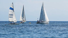 sailboats almacen de video