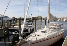 Sailboats. At Dock in the Marina Stock Photos