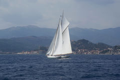 sailboats Fotos de Stock