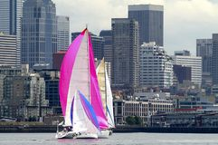 Sailboat Racing on Puget Sound, Seattle, Washington State. Sailboats against Seattle skyline, Seattle, WA Stock Photo