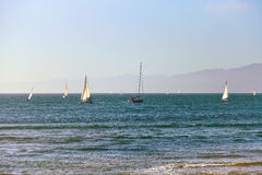 Sailboats back to the Marina Del Rey in California Stock Photo