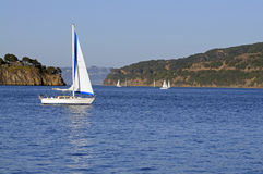 Sailboats in the bay Royalty Free Stock Photo