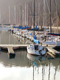 Sailboats in the Bay Royalty Free Stock Images