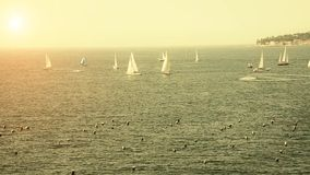 Sailboats in the Bay of Naple stock video footage