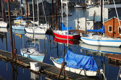 Sailboats in the bayou. Sailboats moored in the bayou Portland Oregon Stock Image