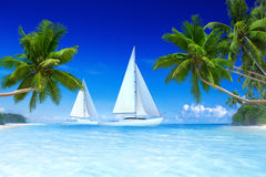 Sailboats Beach Palm Tree Summer Vacation Concept Royalty Free Stock Photos