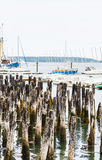 Sailboats Beyond old Wood Pilings Royalty Free Stock Photo