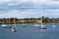 Sailboats and Castillo de San Marcos Fort in Florida`s Historic Coast. stock image
