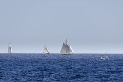 Sailboats on a competition Stock Images