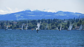 Sailboats. Countless sailboats on a windy spring day in Germany Stock Photography
