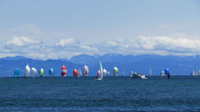 Sailboats. Countless sailboats on a windy spring day in Germany Royalty Free Stock Photos